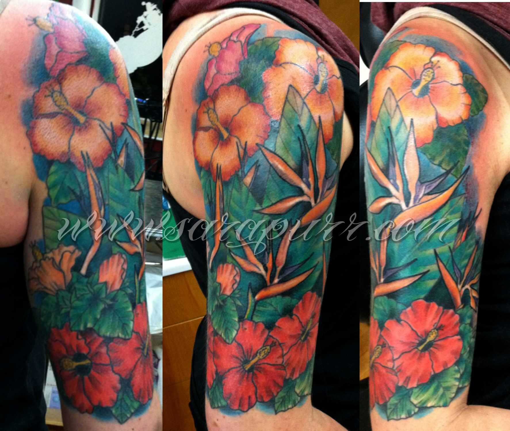 Colored Sleeve Tattoo Of Birds: Sara Purr Tattoo